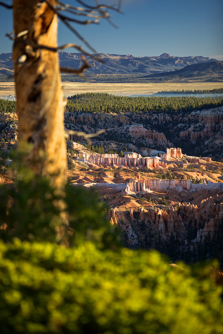 Photograph Bryce Canyon by Hannes Ortmann on 500px