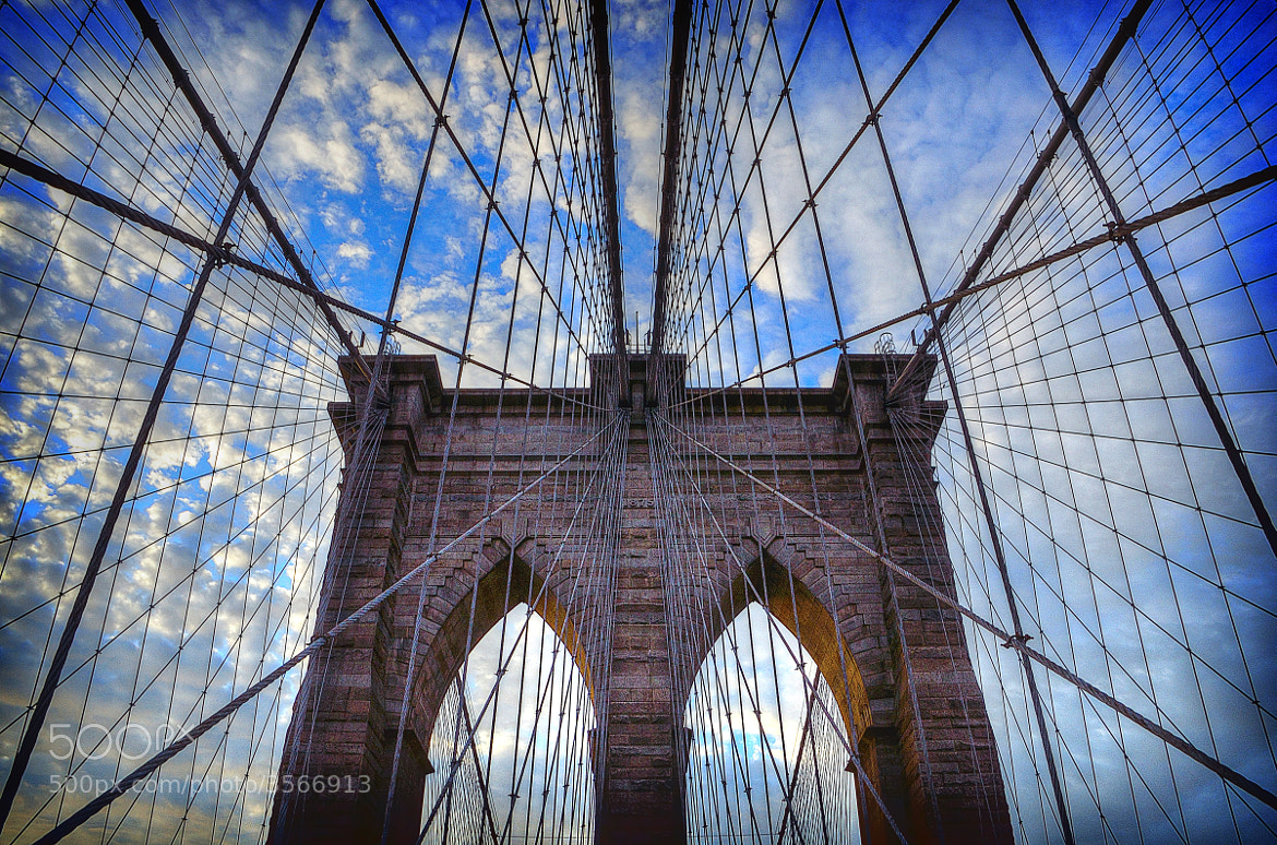 Photograph Caught in the Web by Mike Czumak on 500px