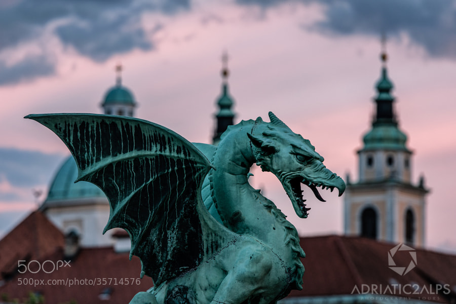 Photograph There be dragons by Luka Esenko on 500px
