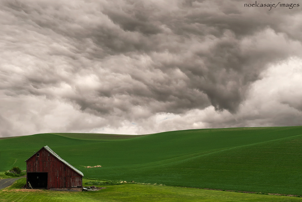 "Photograph ""OMINOUS HORIZON"" Palouse , Washington  by noel casaje on 500px"