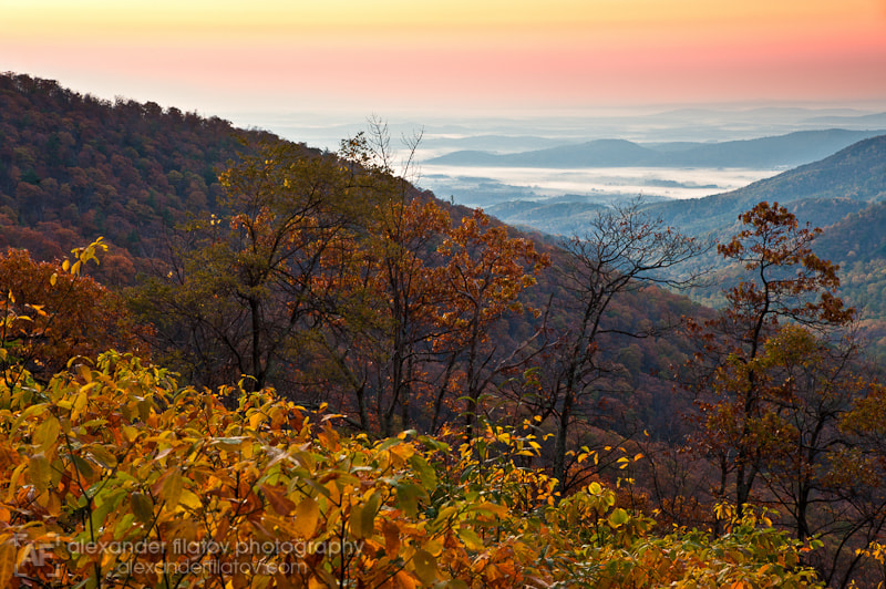 Photograph Shenandoah Valley at Dawn by Alex Filatov | alexfilatovphoto.com on 500px