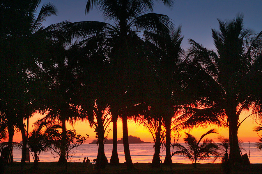 Photograph Sunset in the Tropics by Dmitry Berkut on 500px