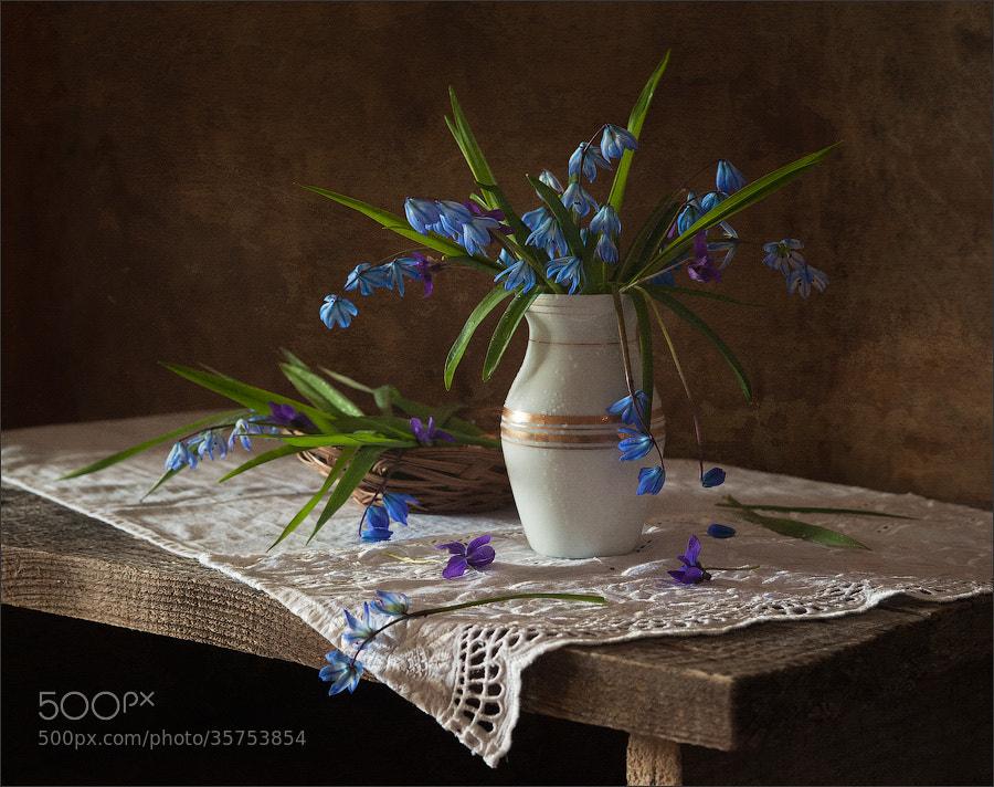 Photograph *** by Elena Khazina on 500px