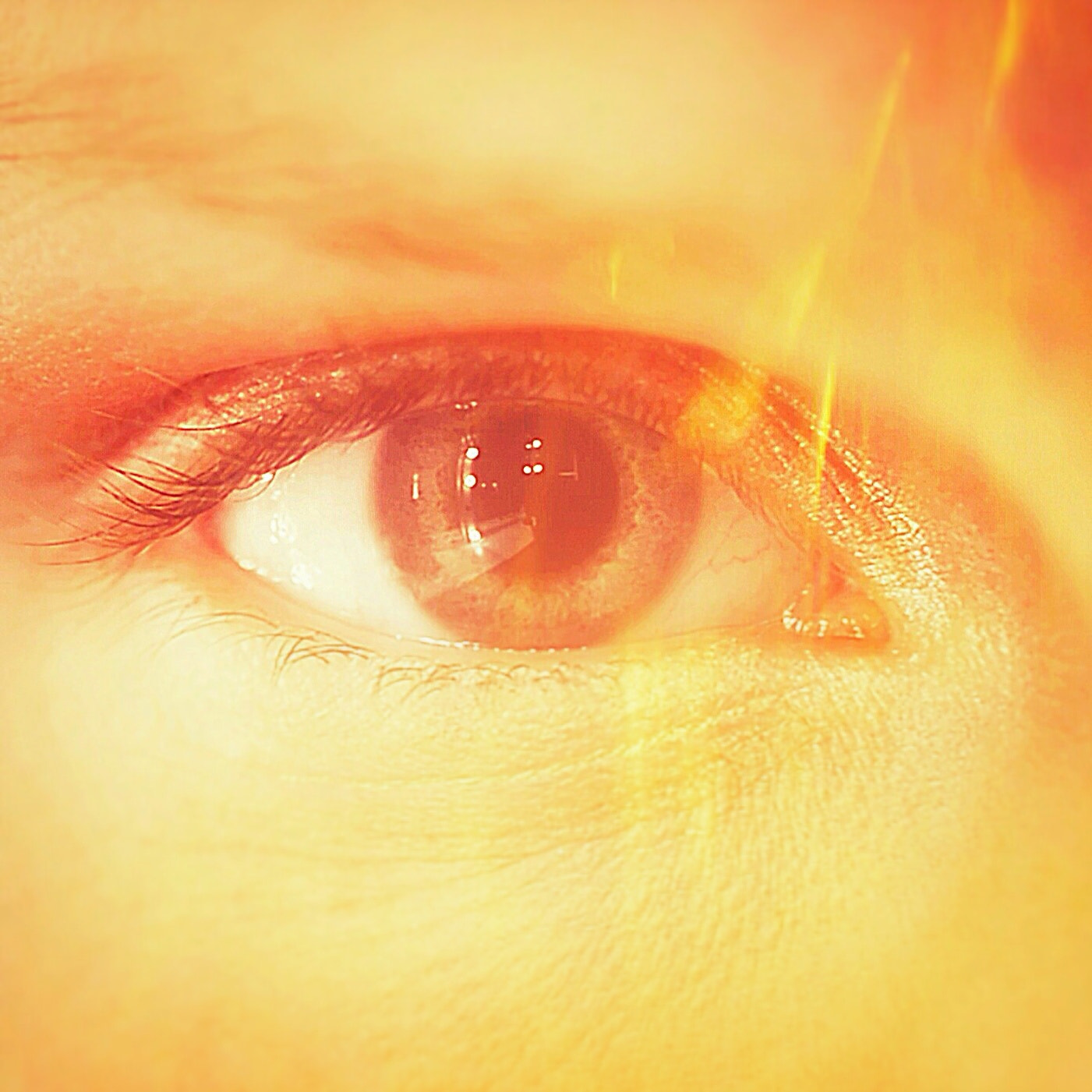 Photograph  I see fire in your eyes.  by Travis Zhang on 500px