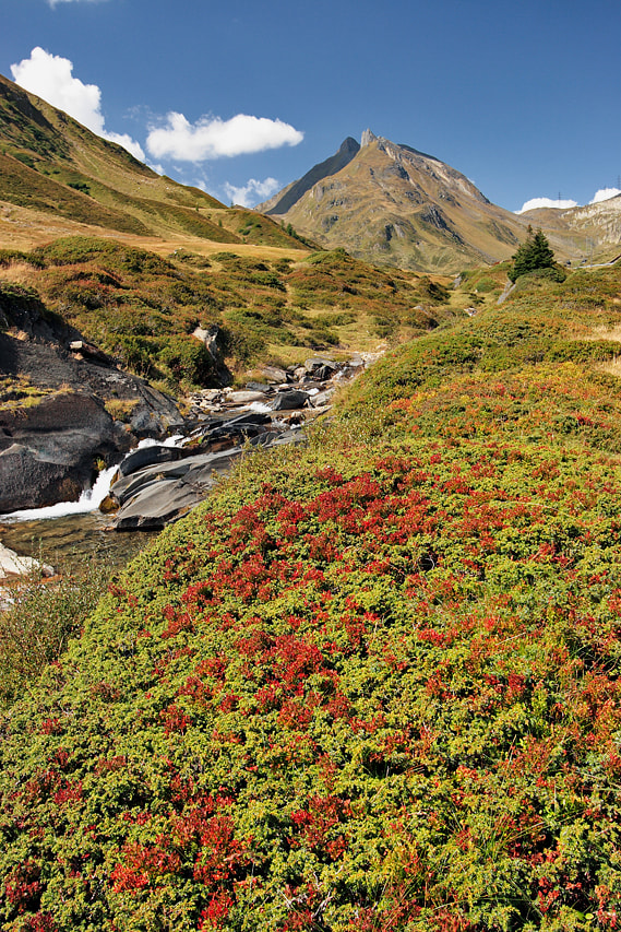 Photograph Nufenen Pass 2 by Michele Galante on 500px