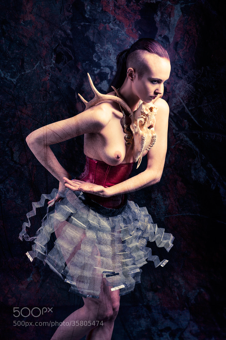Photograph Corset and tutu by artelumen on 500px