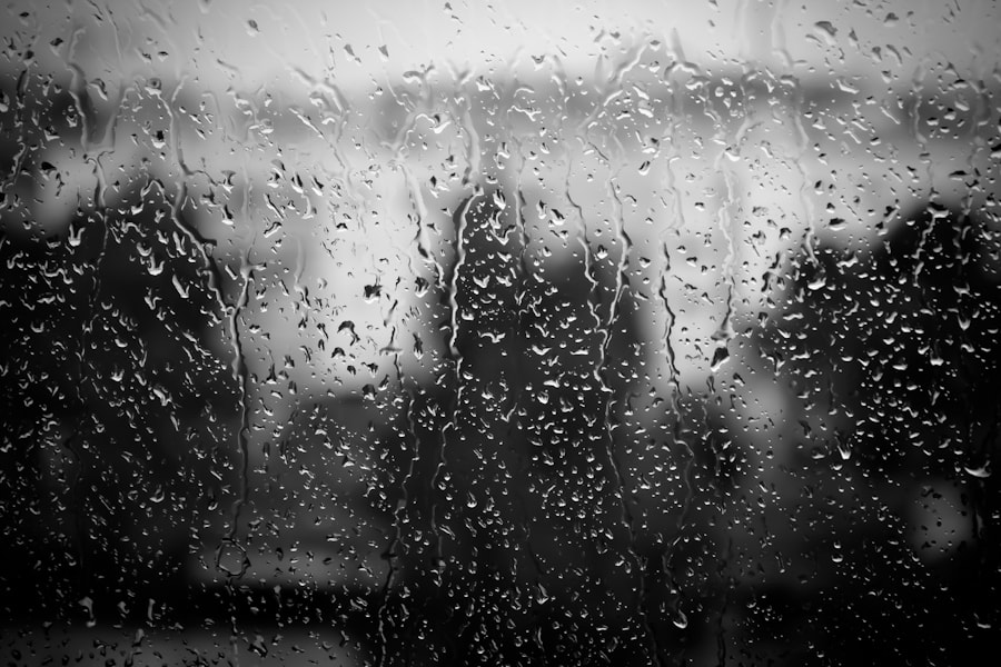 Photograph Rain on the Window by Paulo Mendes on 500px