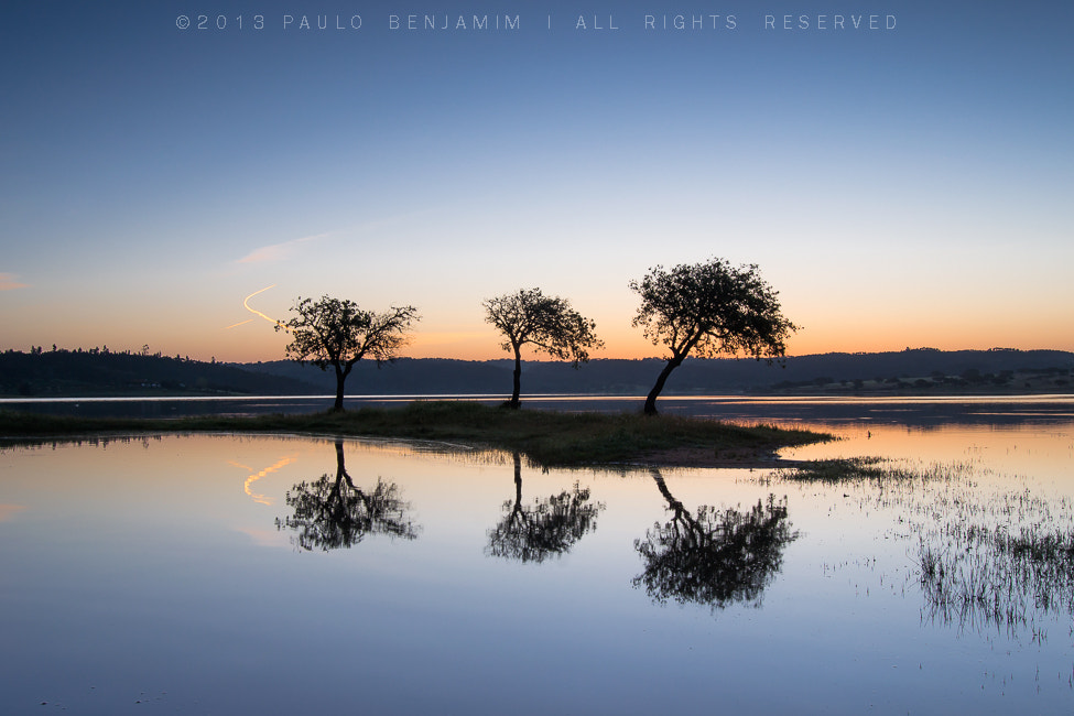 Photograph Triplete by Paulo Benjamim on 500px