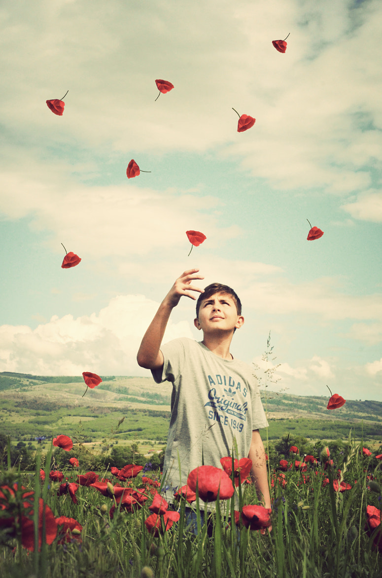 Photograph Flying Hearts by Adrian Limani on 500px