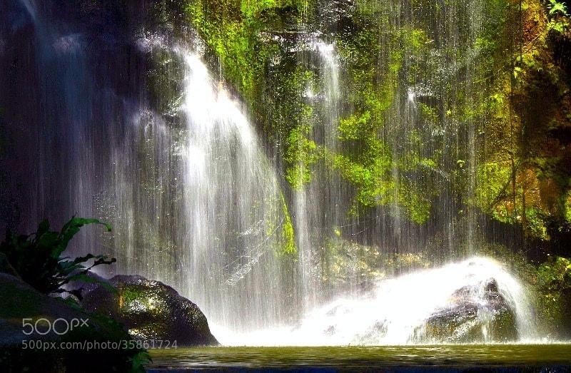 Photograph Waterfall @ KL Birdpark by Ridzwan Ridzwan on 500px