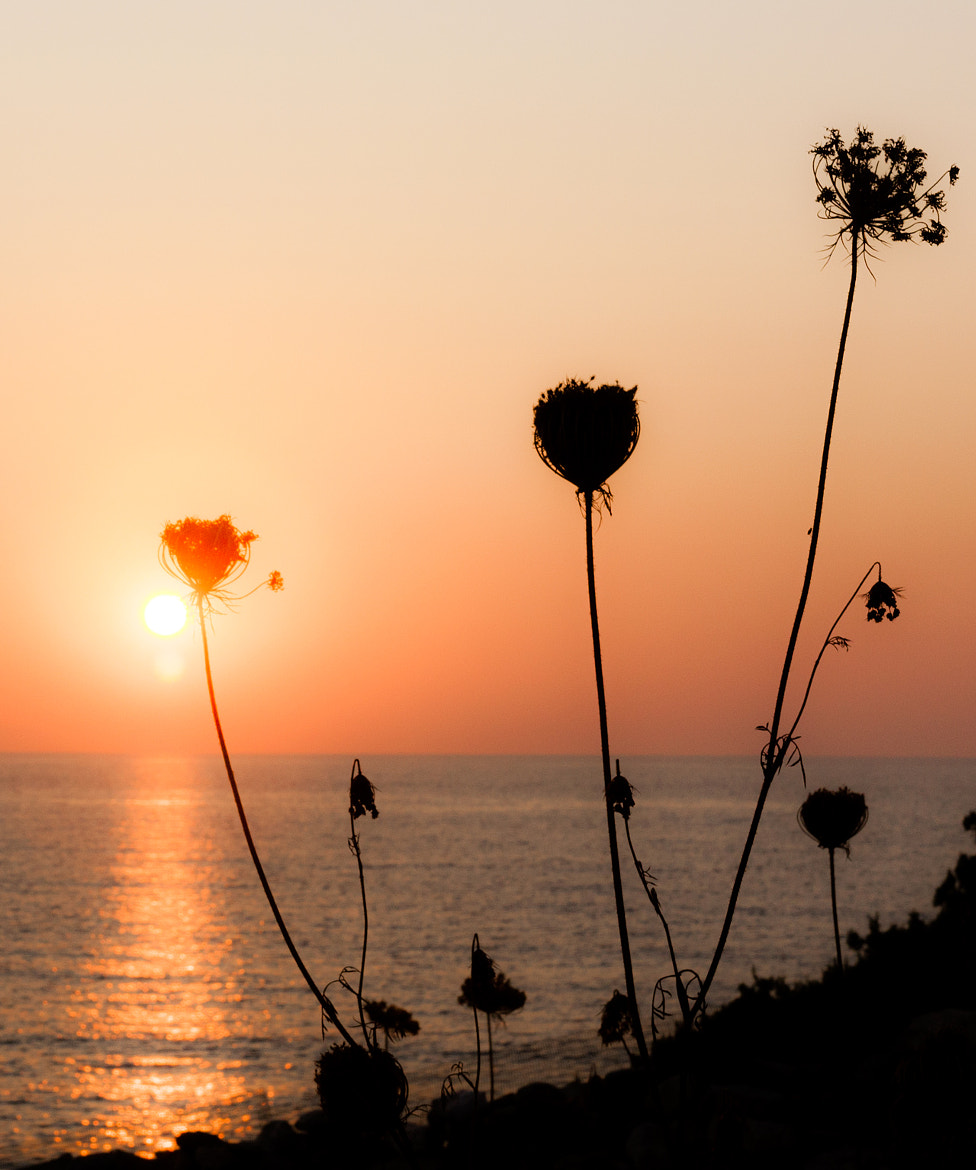 Photograph Antiparos, soleil couchant by Olivier Bigot on 500px