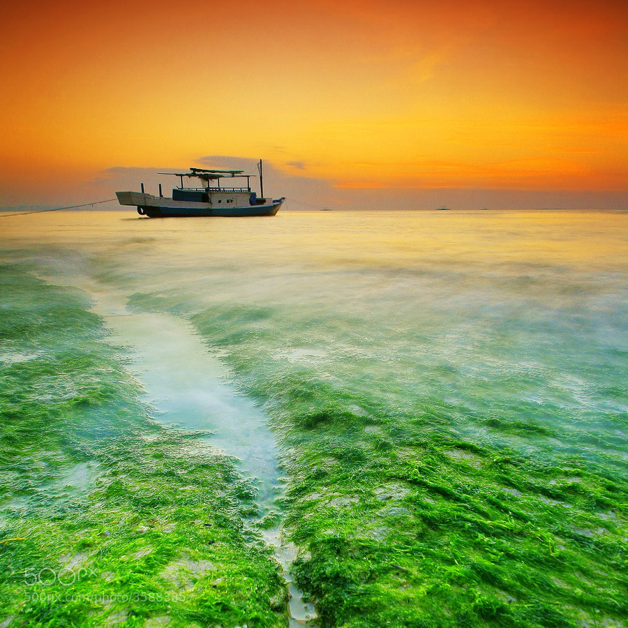 Photograph Stranded Boat by Aris Winahyu BR on 500px