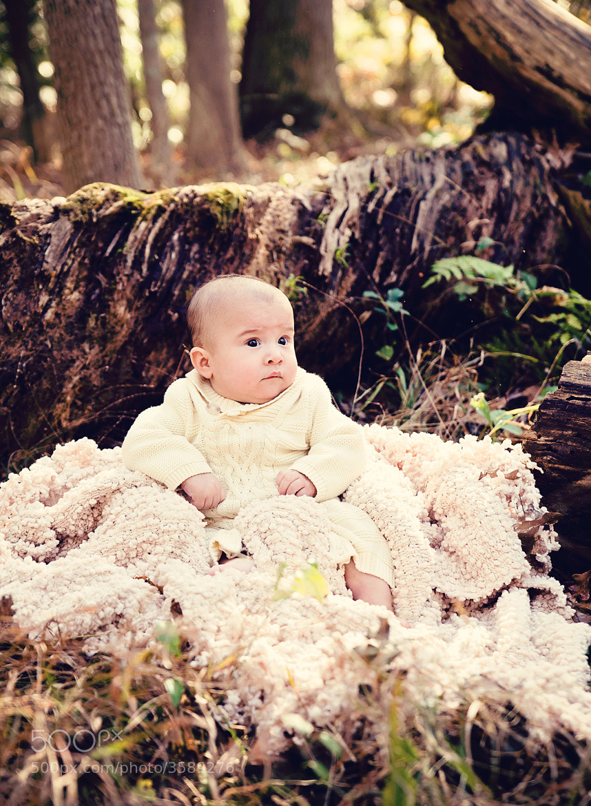 Photograph babe in the woods by Denise Snyder on 500px