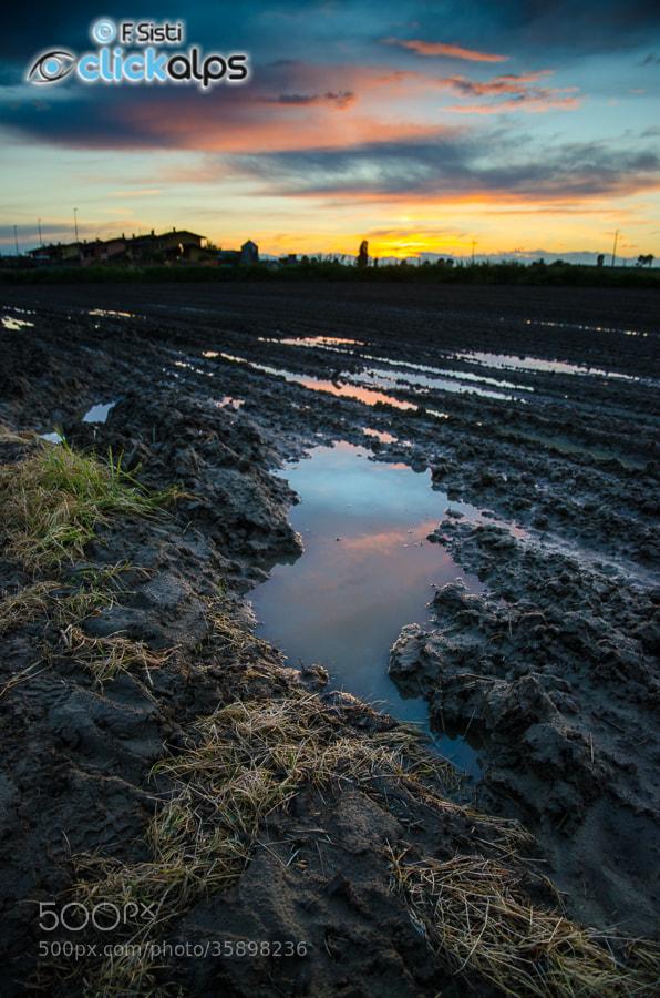 Photograph Ricercando i colori quando, ormai, il sole sta scomparendo... (Dorno, Lomellina, Provincia di Pavia) by Francesco Sisti on 500px