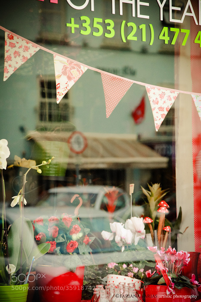 Photograph Flower shop by Fariana Farias on 500px