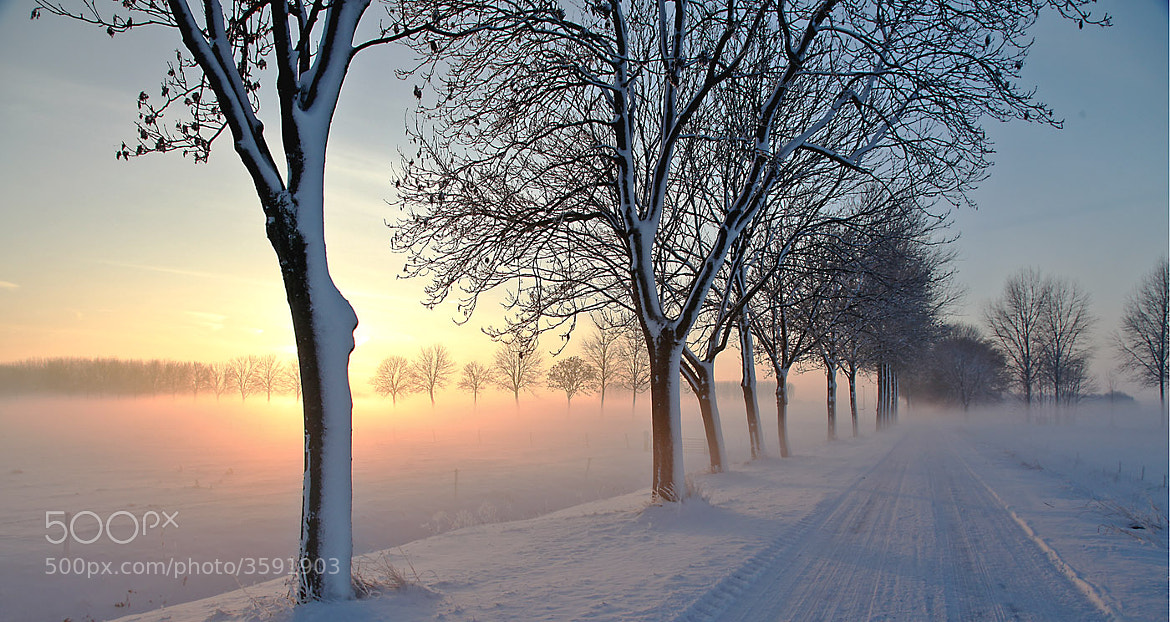 Photograph Winter in Holland  IV by Marinus Keyzer de on 500px