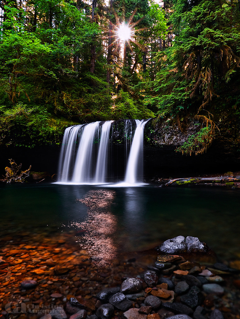 Photograph Butte Creek Falls by Christina Angquico on 500px