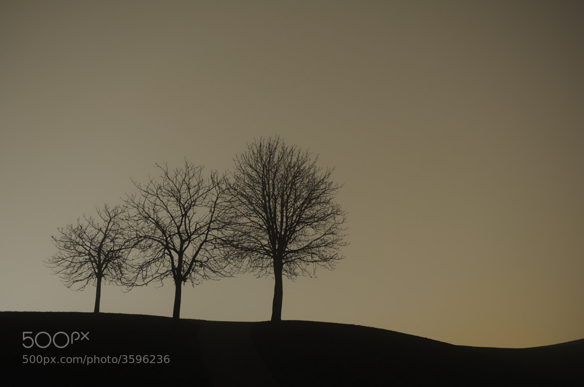 Photograph 3 is family by Thorsten Rüger on 500px