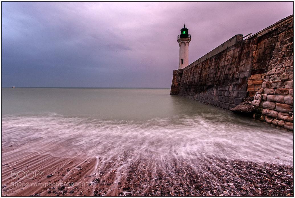 Photograph Green Light by wim denijs on 500px