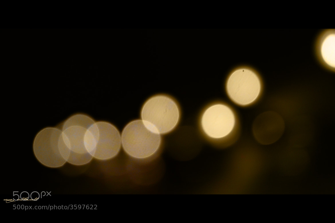 Photograph Beautiful Bokeh. by Nancy Catherall on 500px