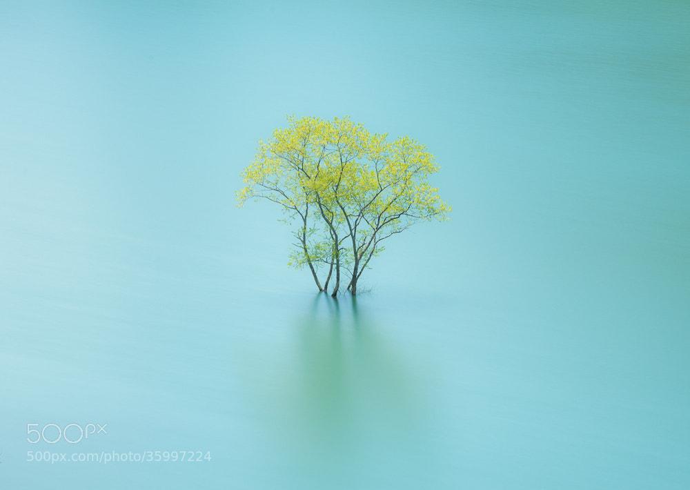Photograph lb.y by makoto shukawa on 500px
