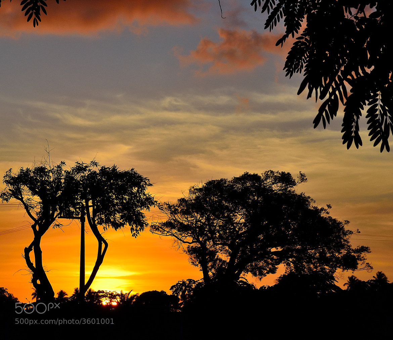 Photograph Fim do dia by Helvio Silva on 500px