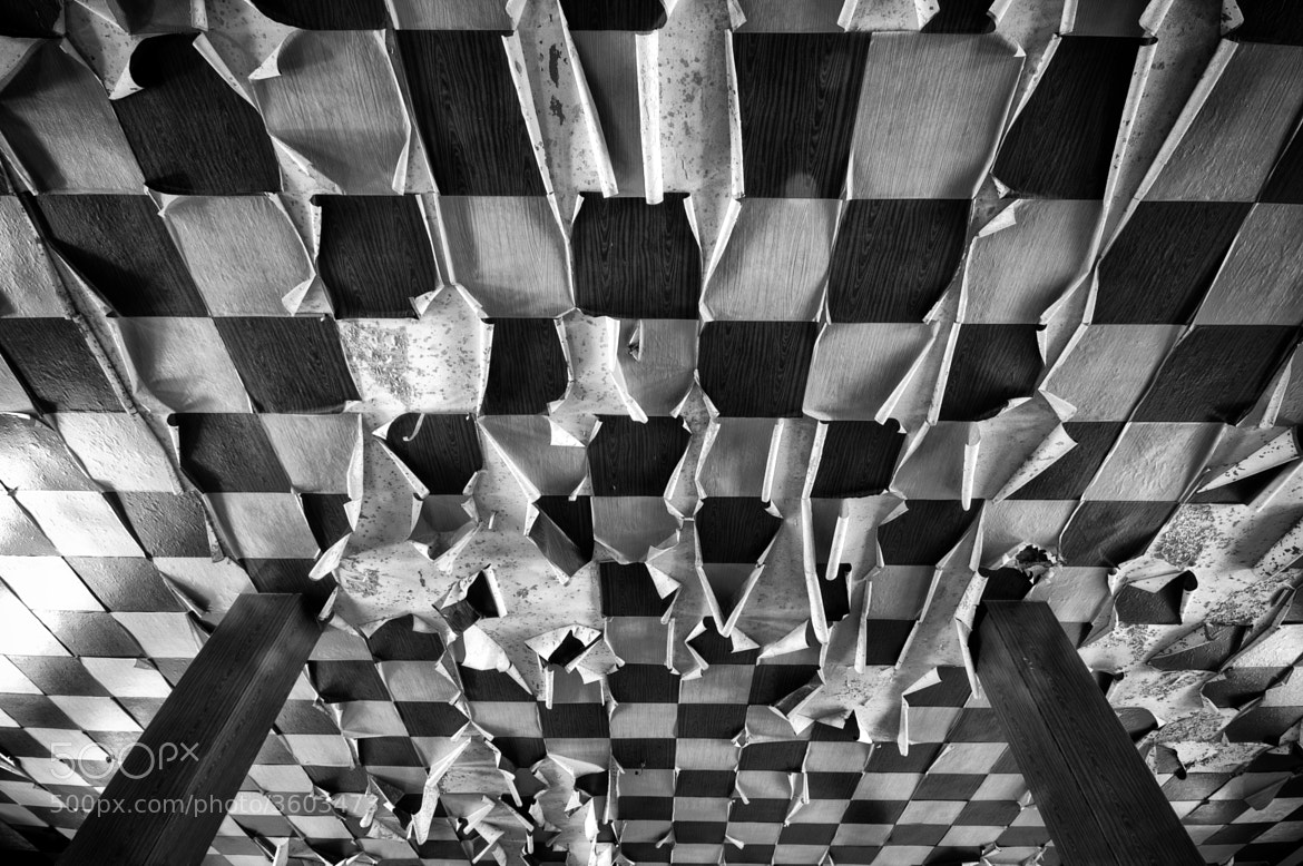 Photograph Chess by Crazy Ivory on 500px