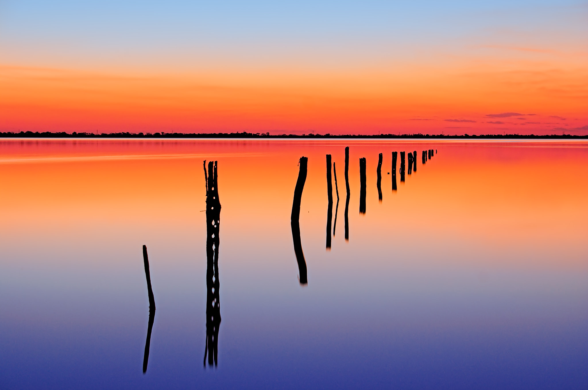 Photograph Vanishing Fence Line by Wayne Bradbury on 500px