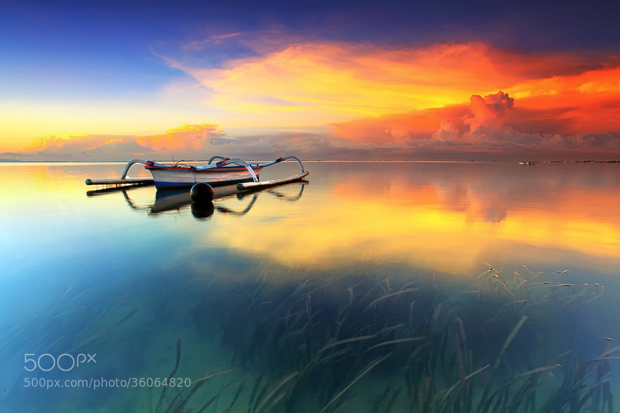 Photograph Color Of The Day  by Agoes Antara on 500px