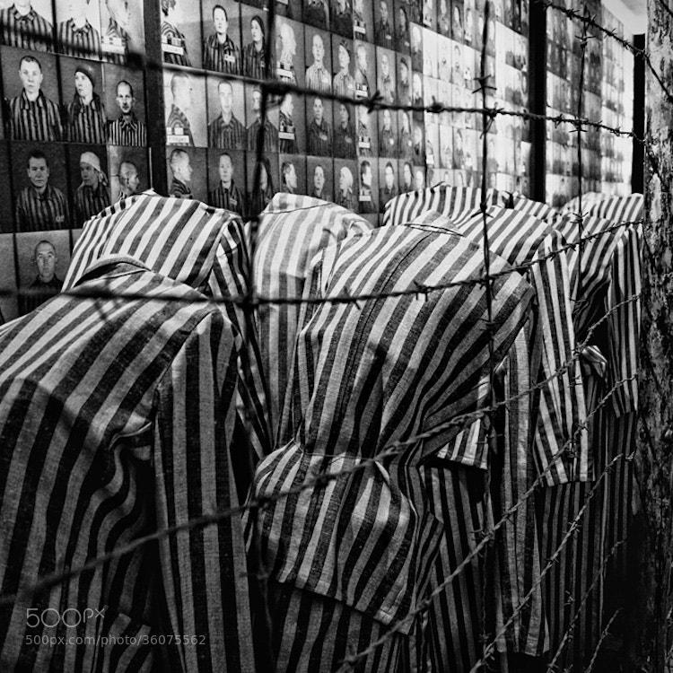Photograph Auschwitz by Marcin Starosta on 500px