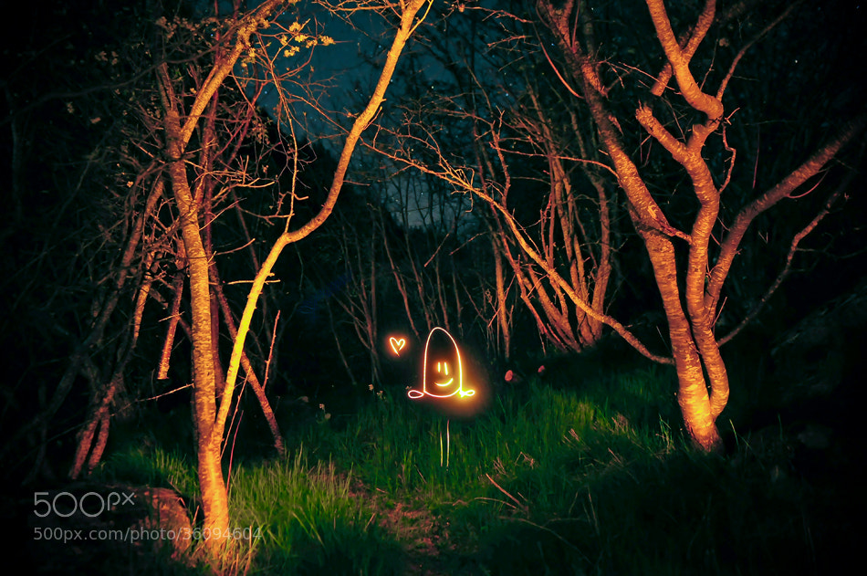 Photograph * Light painting in the wood * by clement jousse on 500px