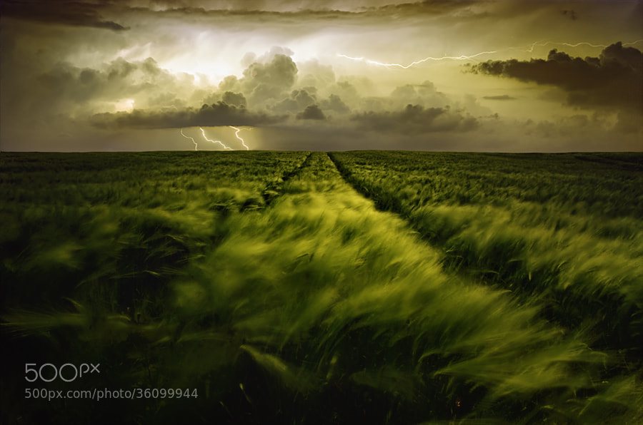 Photograph Journey to the fierce storm by Sona Buchelova on 500px