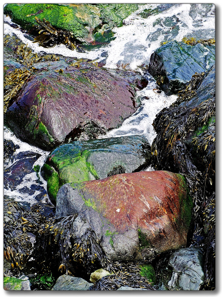 Photograph Colours in the Rocks. by Mark S Lane on 500px