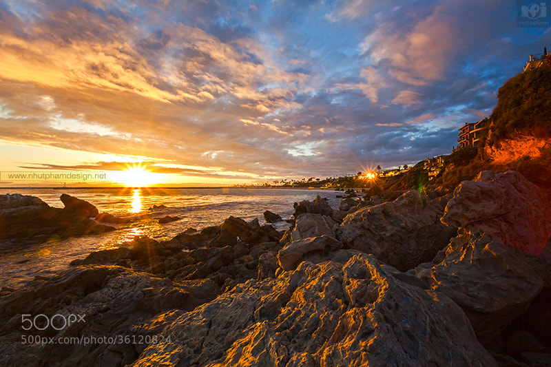 Photograph Last Light of Day! by Nhut Pham on 500px