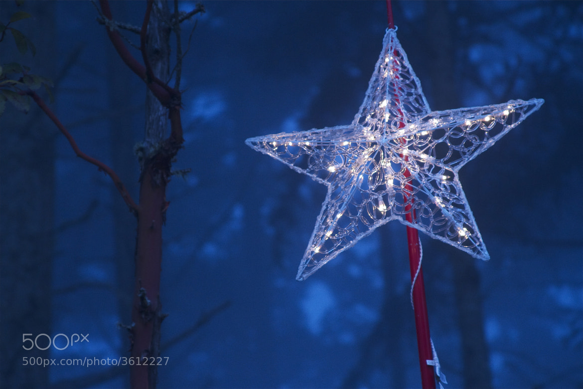 Photograph Star of Wonder by Paul Garrett on 500px