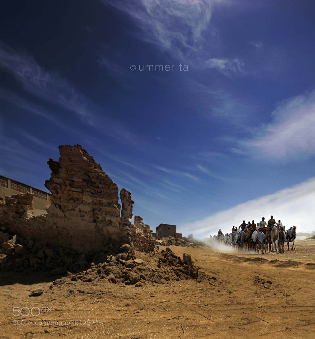 Photograph camel ride in village by Artist Ummer Ta  on 500px