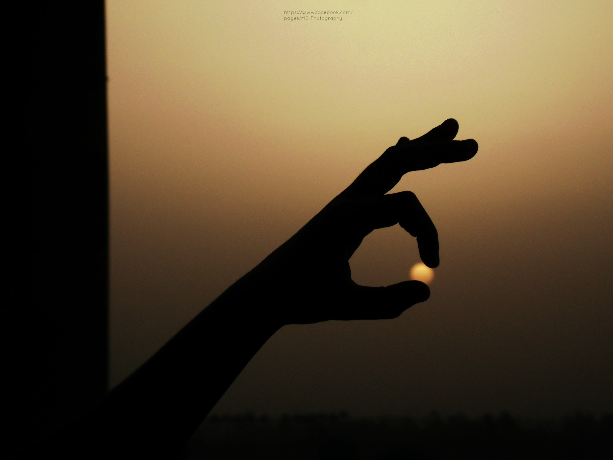 Photograph IMG 6  by Mohamed Radwan on 500px