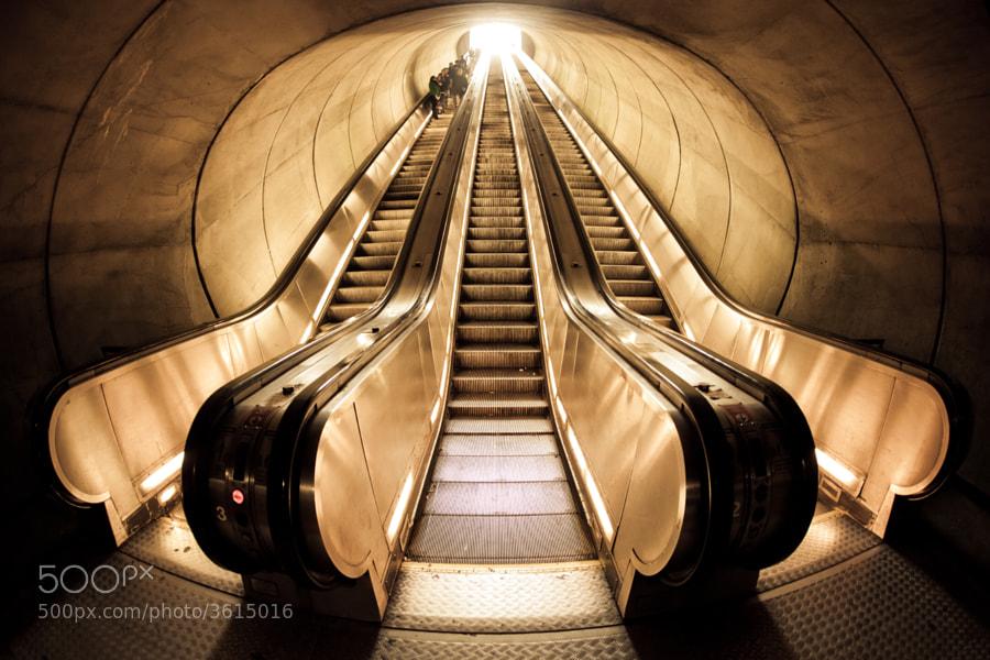 The escalators inside the DuPont Circle station of the Washington Metro.    Washington, DC