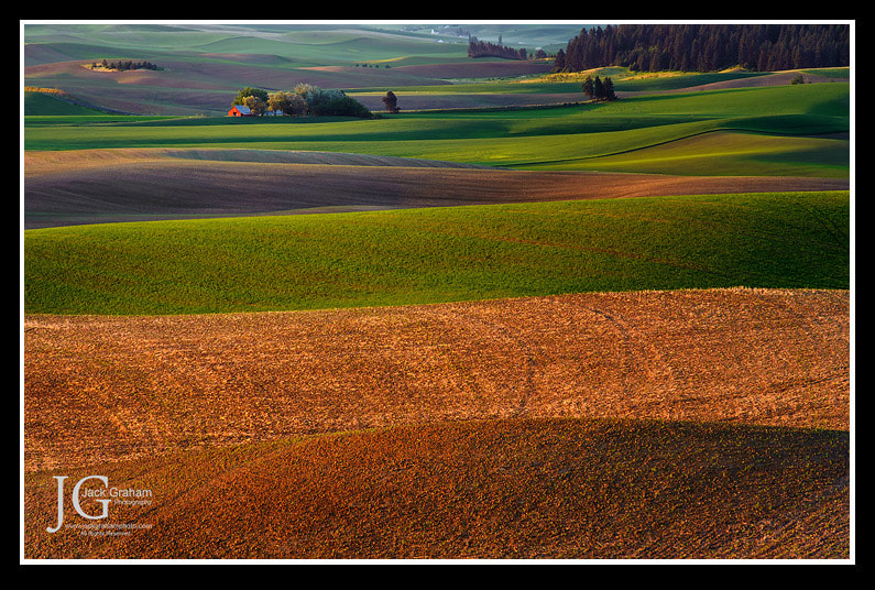 Photograph Peacefield by Jack Graham on 500px