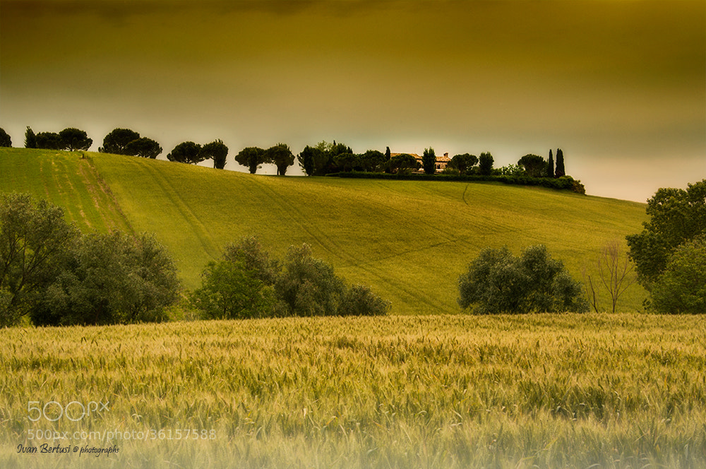 Photograph A perfect day by Ivan Bertusi on 500px