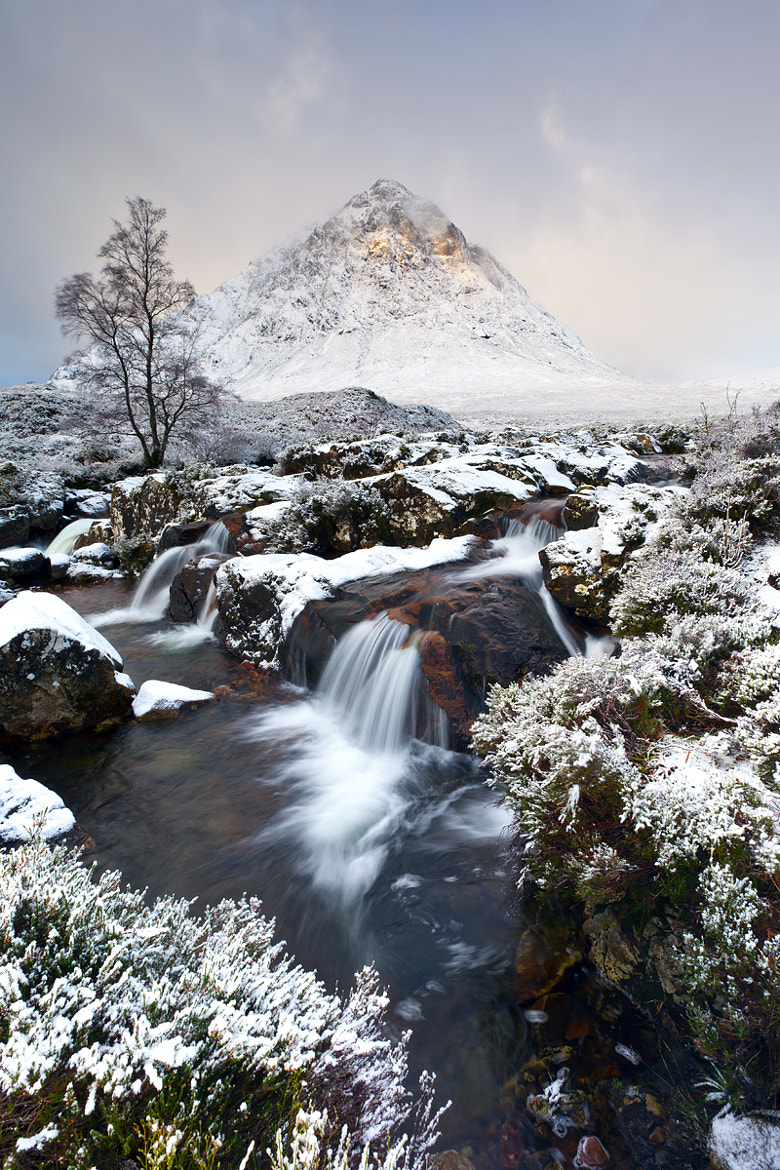 Photograph Light on the Beuckle by Michael James Combe on 500px