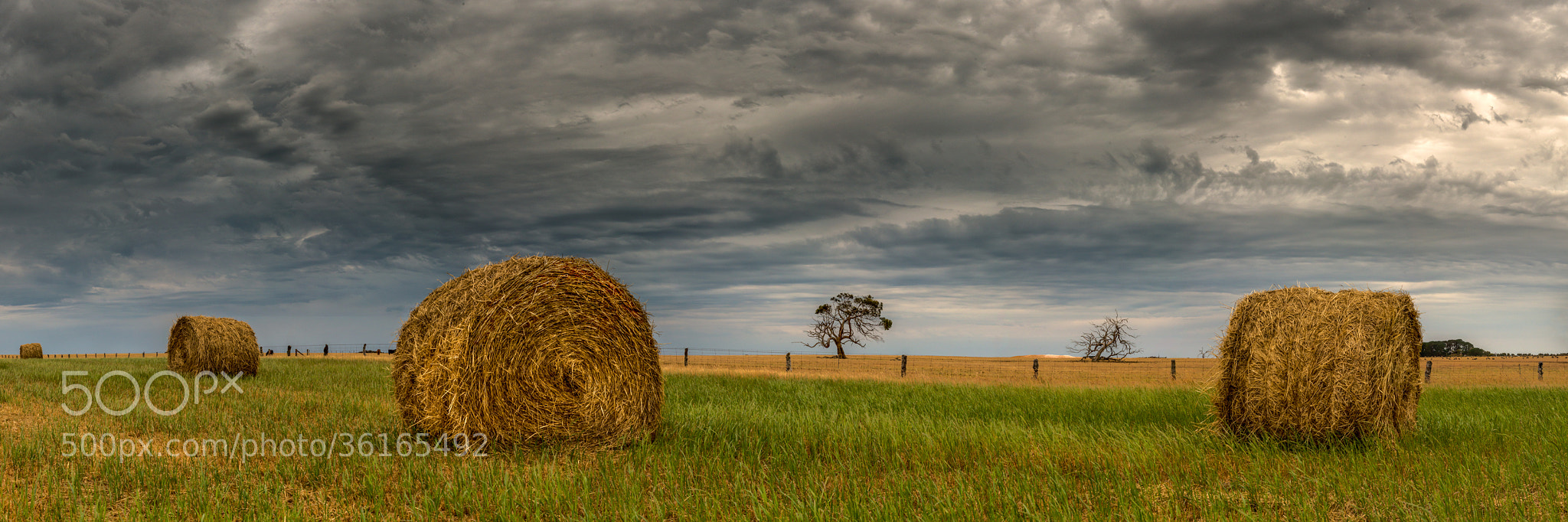 Photograph Storms and Silage by Craig Holloway on 500px