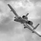 "A-10 East Coast Demonstration Pilot Major Dylan ""HABU"" Thorpe flies over the 2011 Great Georgia Airshow."