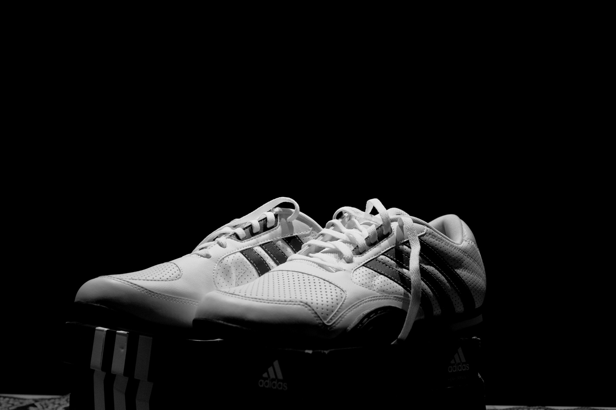 Photograph Adidas by Mohammad Damirchi on 500px