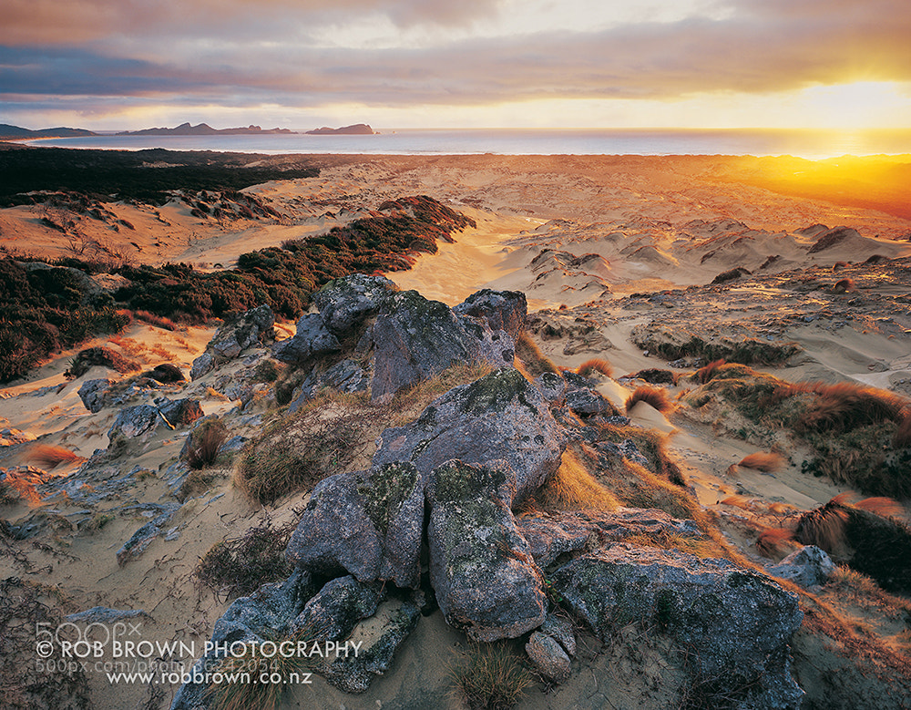 Photograph Mason Bay, Stewart Island by Rob Brown on 500px