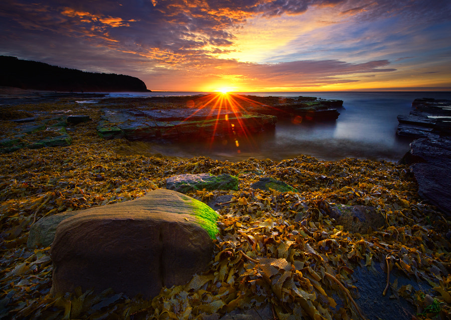 Photograph Turimetta sunrise by Paparwin Tanupatarachai on 500px