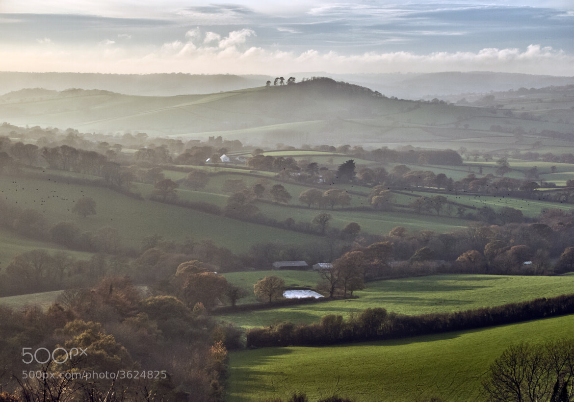Photograph View over Marshwood Vale by Steve Luck on 500px