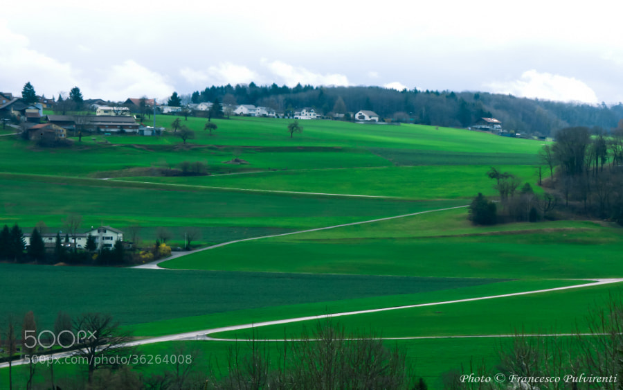 Photograph Swiss countryside by Francesco Pulvirenti on 500px