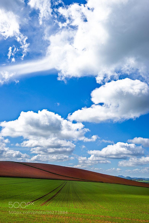 Photograph Dreamlike by Maciej Markiewicz on 500px