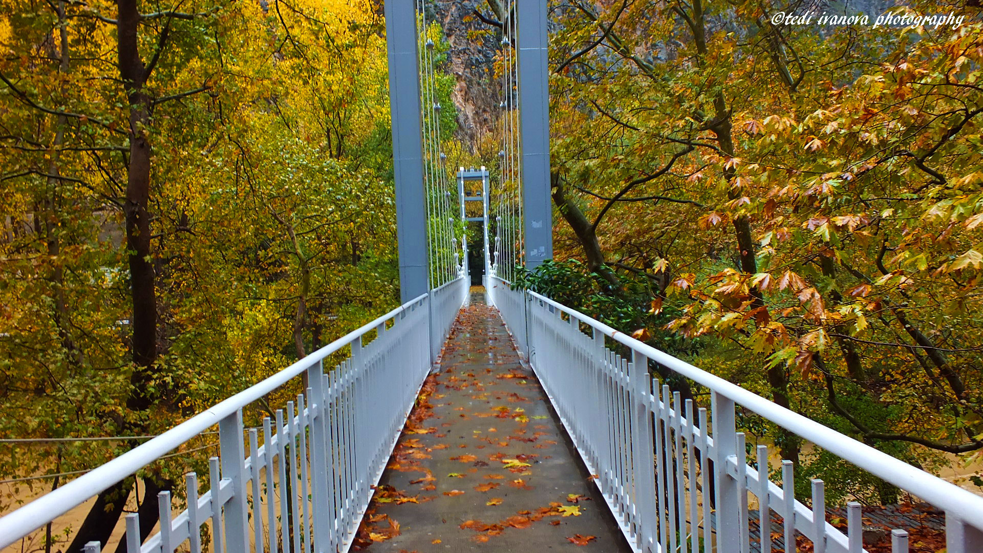 Photograph MY FAVORITE BRIDGE IN AUTUM by Tedi  Ivanova on 500px